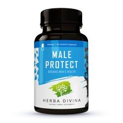 Herba Divina Male Protect - хранителна добавка в подкрепа на мъжкото здраве - 60 капсули