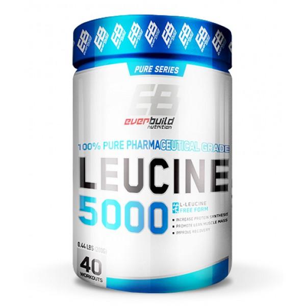 EVERBUILD LEUCINE 5000