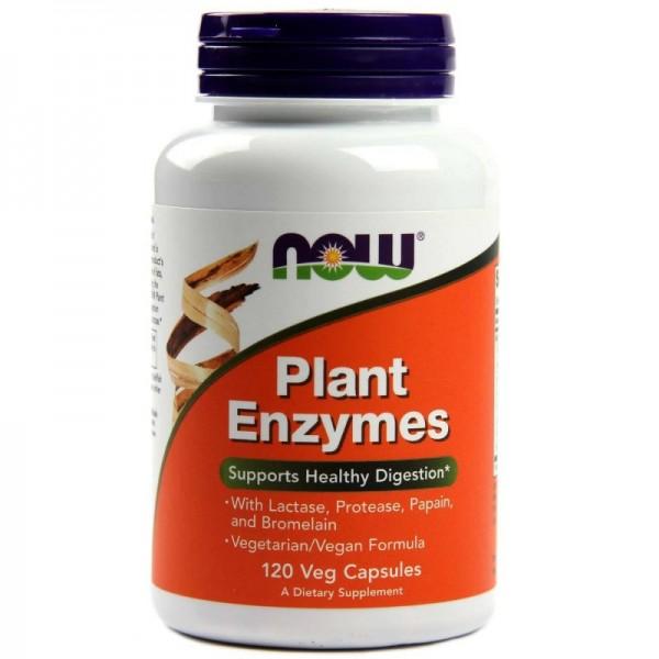 NOW FOODS Papaya Enzymes