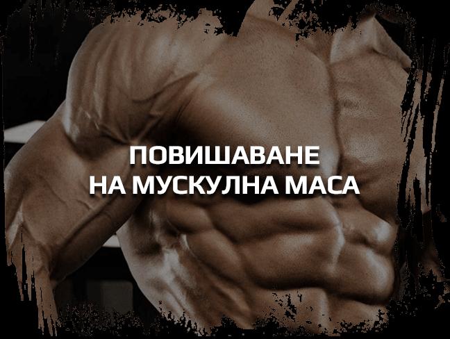 Повишаване на мускулна маса